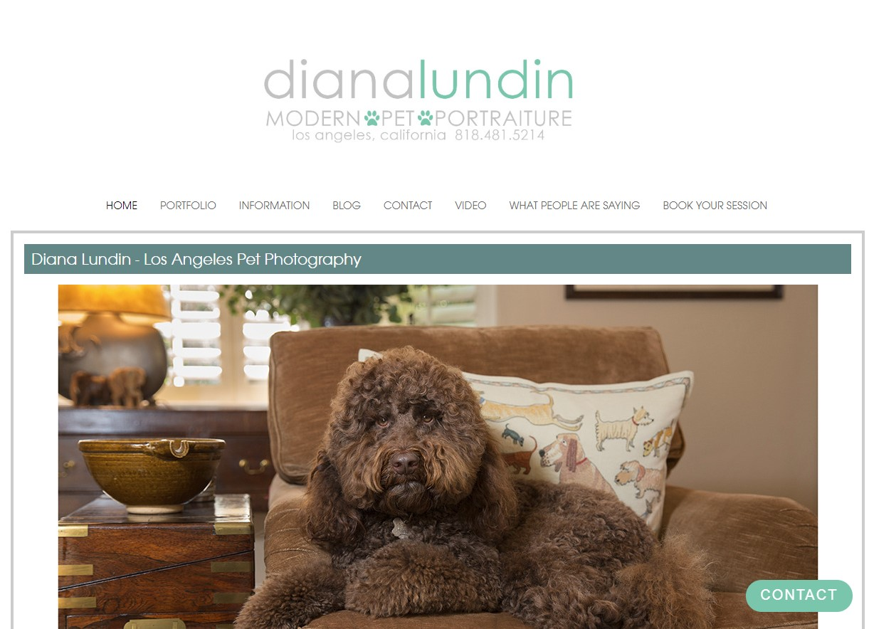 Website Design / Development Diana Lundin
