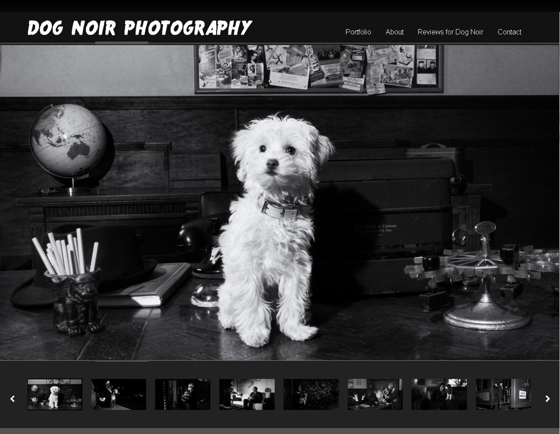 Website Design / Development & SEO Dog Noir